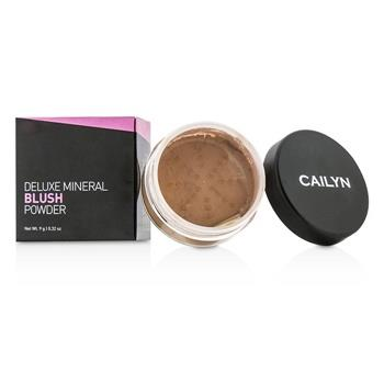 Cailyn Deluxe Mineral Blush Powder – #02 Burnt Orange 9g/0.32oz Make Up