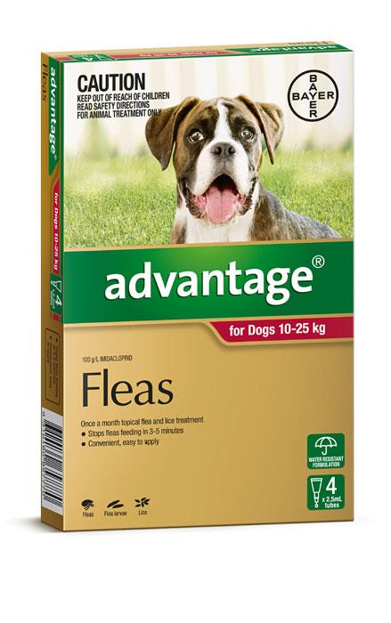 Advantage For Large Dogs (10-25kg) – 4 Pack