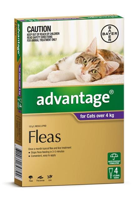Advantage For Large Cats (Over 4kg) – 4 Pack