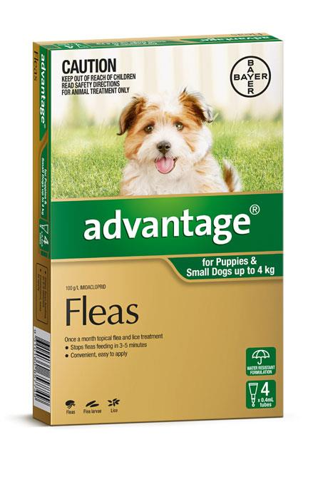 Advantage For Small Dogs (Up To 4kg) – 4 Pack