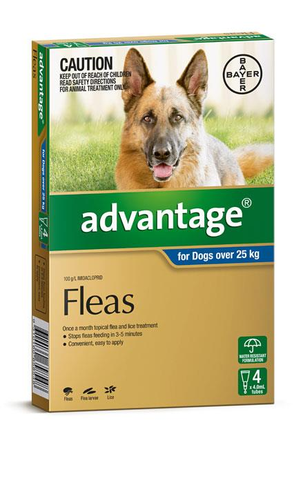 Advantage For Extra Large Dogs (Over 25kg) - 4 Pack