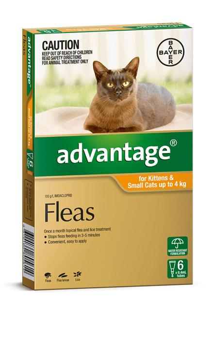 Advantage For Kittens & Small Cats (Up To 4kg) - 6 Pack