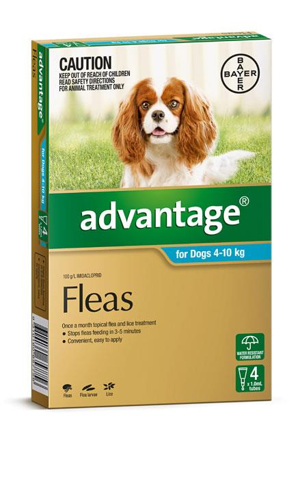 Advantage For Medium Dogs (4-10kg) - 4 Pack