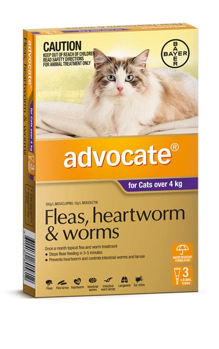 Advocate For Large Cats (Over 4kg) – 3 Pack