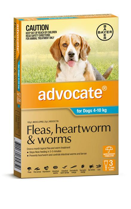 Advocate For Medium Dogs (4-10kg) - 3 Pack