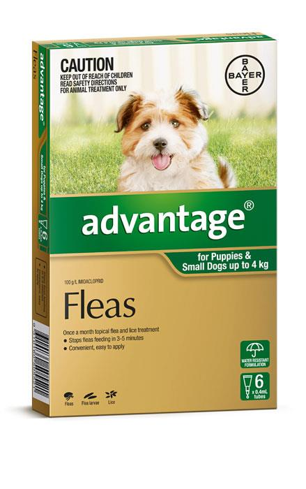 Advantage For Small Dogs (Up To 4kg) - 6 Pack