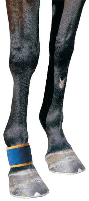 Dick Wicks Therapeutic Magnetic Horse Pastern/Fetlock Boot