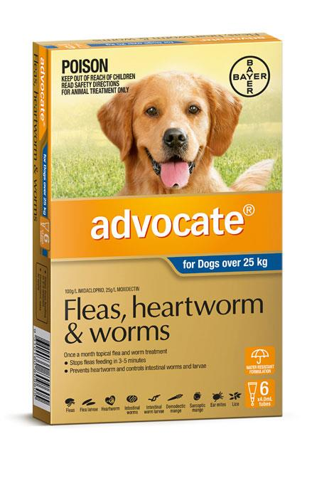 Advocate For Extra Large Dogs (Over 25kg) – 6 Pack